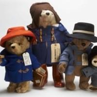Paddington Bears from around the world