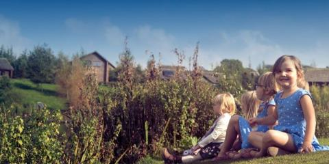 Bluestone Lodges & Cottages, Pembrokeshire.