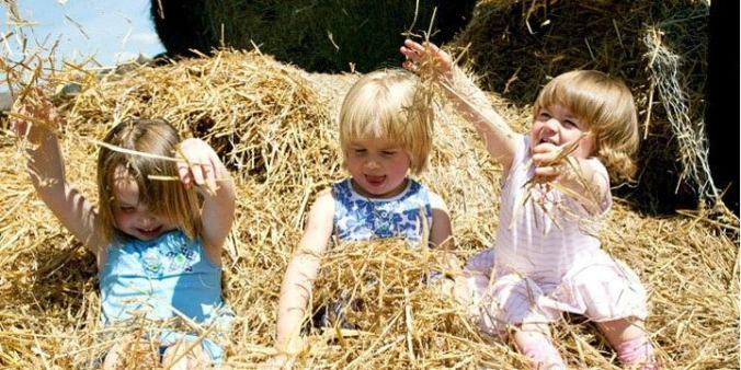 Best Farmstay Family Holidays