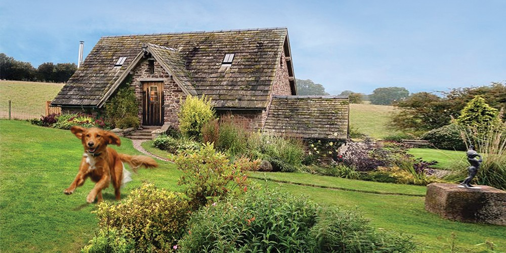Picture of Dog-friendly Family Holiday Cottages