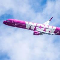 WOW Air Starts Daily Flights to NYC's JFK from $99