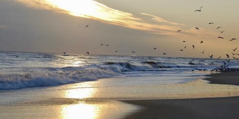 A Long Island beach, New York State.