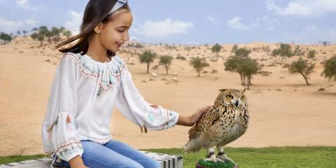 [copyright]Falconry at Al Wadi Desert.[/copyright]