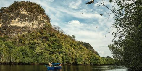 [copyright]Mangroves and Eagle Safari at Four Seasons Resort, Langkawi.[/copyright]