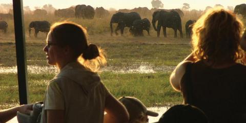 Botswana Family Safari with Teenagers