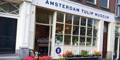 Tulip Museum, Amsterdam.