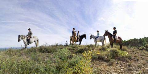 Horse riding sessions for all the family at Le Rouret Holiday Village.