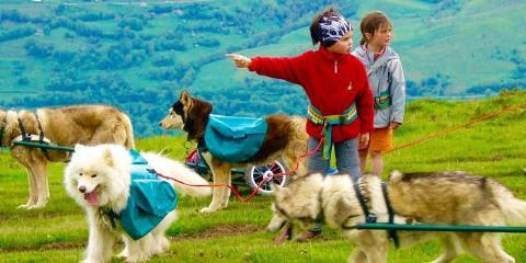 Cani-rando in Loudonvielle,