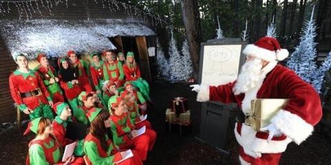 Santa in his Woodland Workshop ©