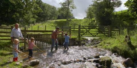 Playing in the stream at Lake District Farm.