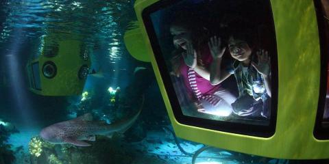 Submarine Adventure at LEGOLAND® Dubai.