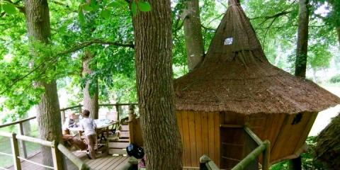 A treehouse at the Domaine