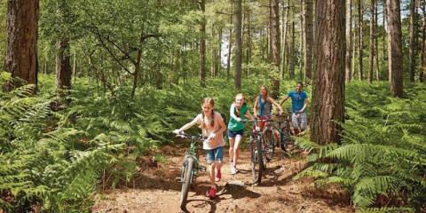 Cycling through the woods at Oakdene Forest.