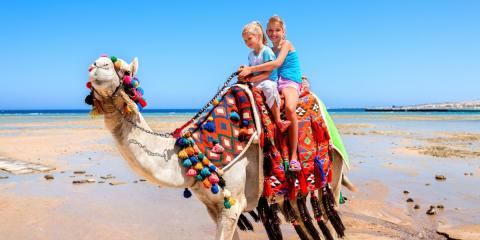 Family Activity & Adventure Holiday Deals