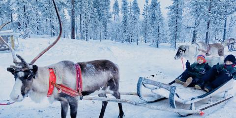 A reindeer sleigh-ride with Santa's Magic.