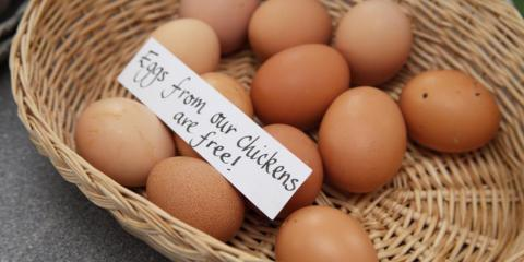 Daily fresh eggs at Cheddar Gorge Collection.