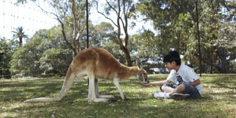 [copyright]Get up close to Australian wildlife on a winter sun family adventure.[/copyright]