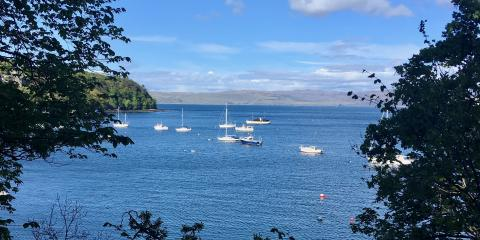 Tobermory harbour from the coastal path.