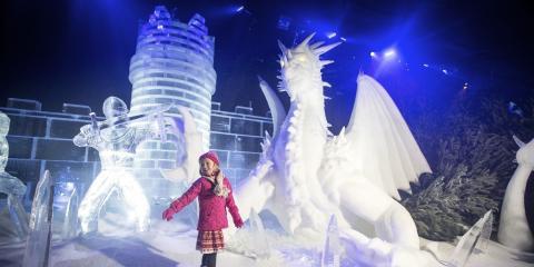 The Magical Ice Kingdom