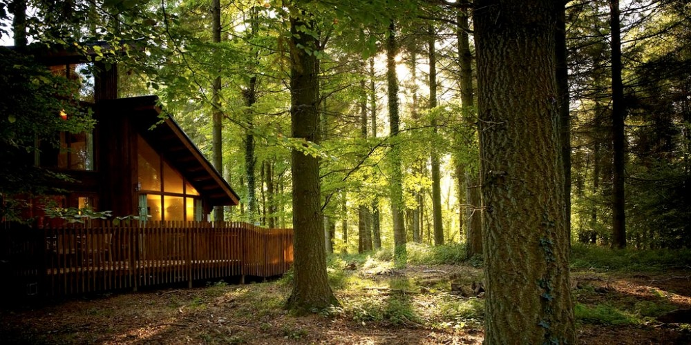 Picture of Forest Holidays Forest of Dean Cabins
